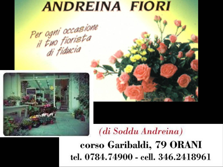 logo Andreina Fiori