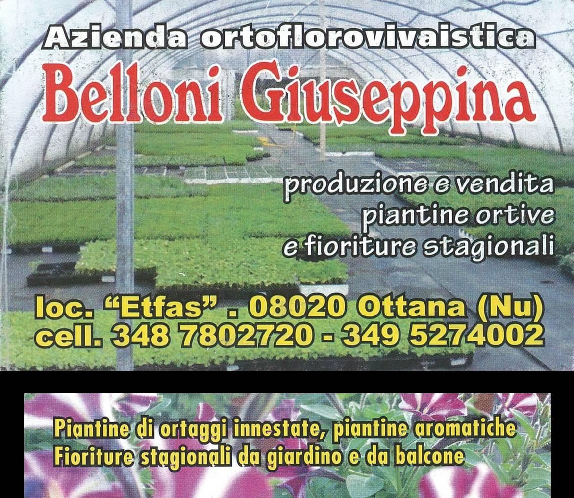 logo Azienda Belloni Giuseppina