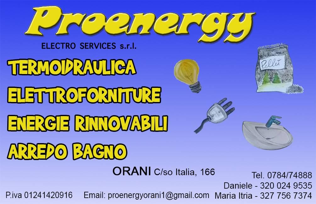 logo Pro Energy